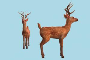 Deer deer, gazelle, elk, reindeer, animal, animals, wild, nature, cartoon