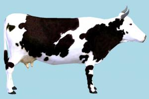 Cow cow, animal, animals, wild, nature, mammal, ruminant, farm, milk