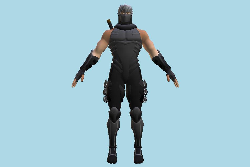 Ninja Ryu Hayabusa 3d Model