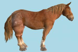 Horse horse, animal, animals, wild, nature, mammal, ruminant, zoology, africa, forest, jungle, predator, prey