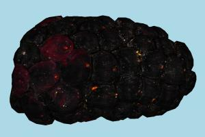 Blackberry fruit, vegetable, food, scanned