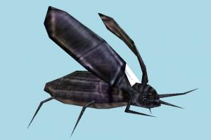 Cockroach cockroach, bugs, insects, creature, nature, lowpoly