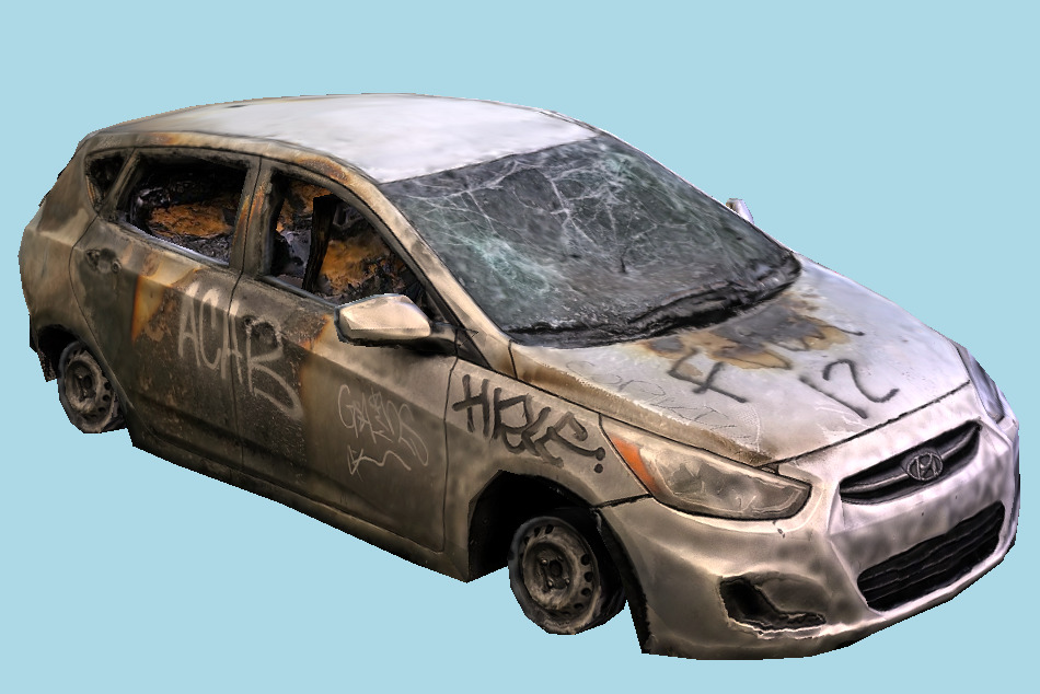 Protest Car Damaged 3d model
