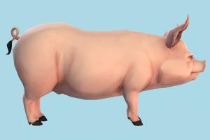 Pig Cartoon pig, animal, animals, wild, nature, zoology, toon, cartoon