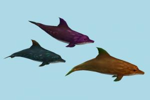 Dolphin dolphin, delfin, whale, shark, fish, sea-creature, fishing, sea, collection
