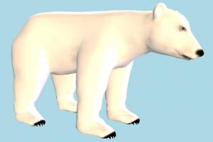 Polar Bear bear, polar, animal, animals, wild, nature, mammal, zoology